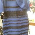 #TheDress, la robe est-elle bleue ou blanche ?